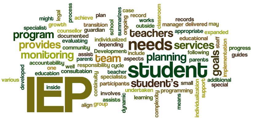Incorporating DIR Goals into the Individual Education Plan (IEP)